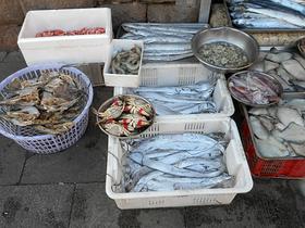 中国の市場で常温販売されている魚介類。