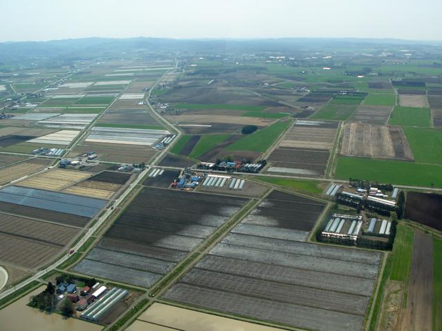 5月の北海道長沼町付近上空