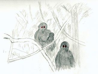 森には猿の精霊がひそむ(絵・筆者)