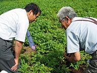 圃場で作物を前にすれば外食と農業の壁を越えて話も弾む