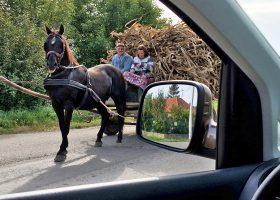 運転手が機転を利かせて車を反転させて馬車を撮らせてくれる。