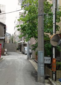 東京大神宮に上る道