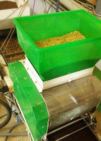 種籾と水を撒き(手前)、覆土をかけます(左上)