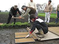 苗箱を並べる稲葉氏、「育苗の技術は農家一人ひとりが大切にすべき」と言う
