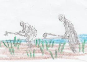 中洲のとうもろこし畑を耕す老人と孫娘