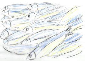 「ジャコ萬と鉄」より。かつて北海道近海には、海鳴りがするほどのニシンの群れが押し寄せていた