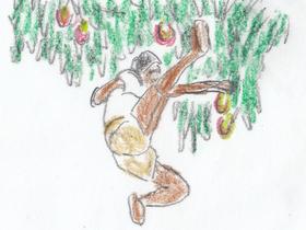 「ペレ 伝説の誕生」より。マンゴーの木の下で実をボール代わりに練習する少年時代のペレ。