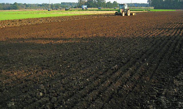 比較的新しく開墾された火山灰土地帯の圃場