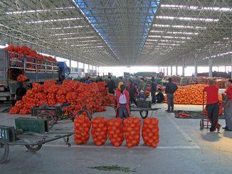 中国の巨大青果市場(山東省で)
