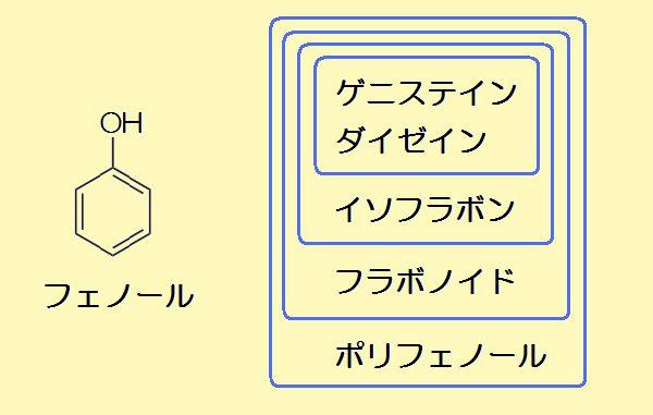フェノールの構造式(左)とポリフェノールの分類
