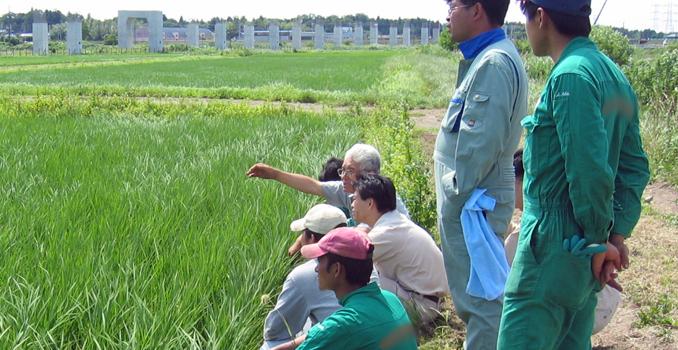 圃場で作物を前にすれば外食と農業の壁を越えて話も弾む。