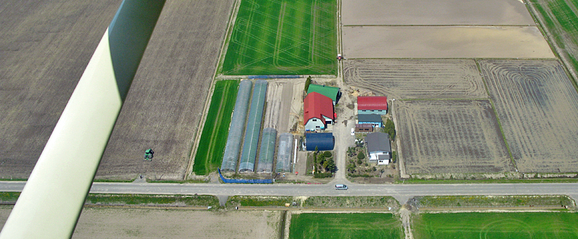 北海道の農場