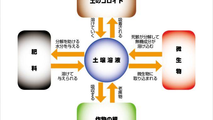 土壌溶液による栄養の制御