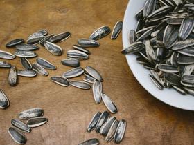 ヒマワリの種をどのように食べるか。もともとは殻付きなわけだが……。